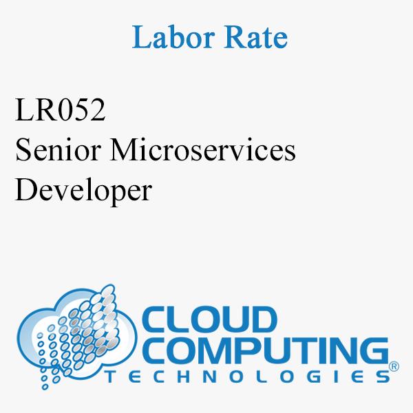 Senior Microservices Developer