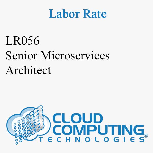 Senior Microservices Architect