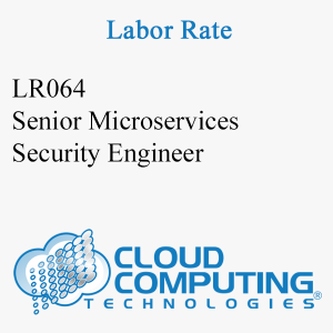 Senior Microservices Security Engineer