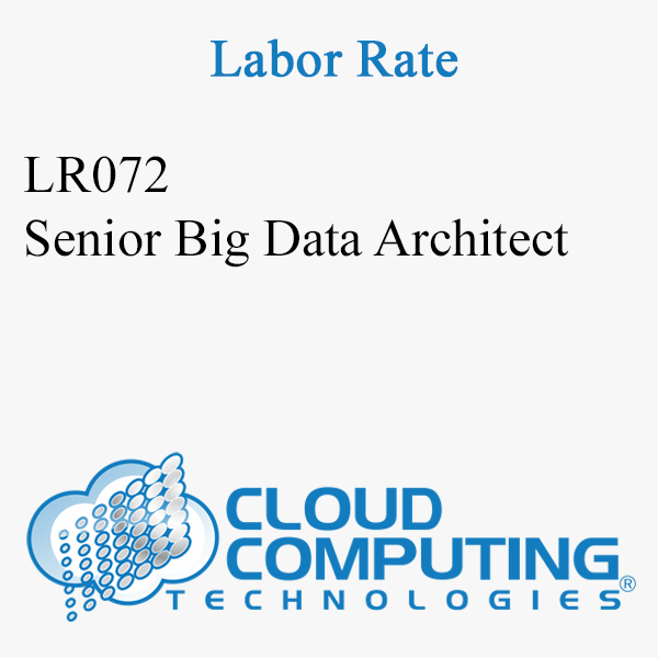 Senior Big Data Architect