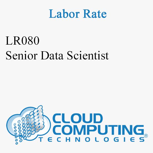 Senior Data Scientist