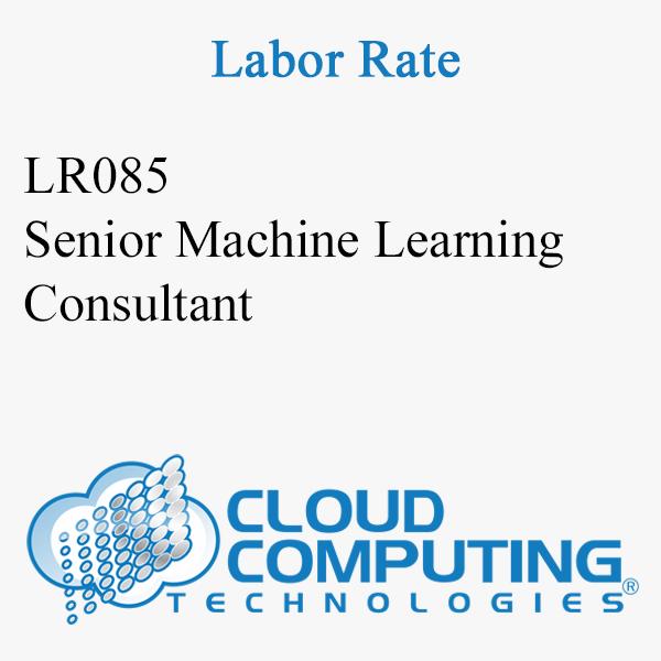 Senior Machine Learning Consultant