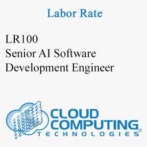 Senior AI Software Development Engineer
