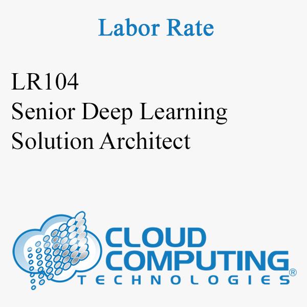 Senior Deep Learning Solution Architect