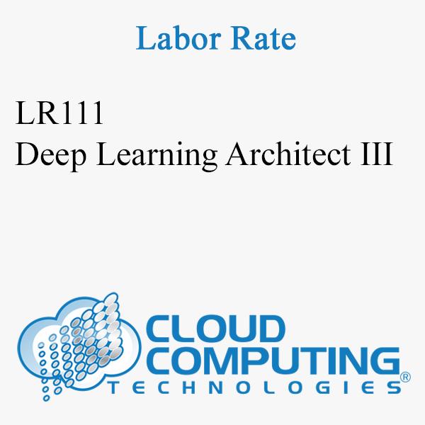 Deep Learning Architect III