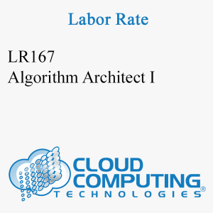 Algorithm Architect I
