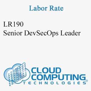 Senior DevSecOps Leader