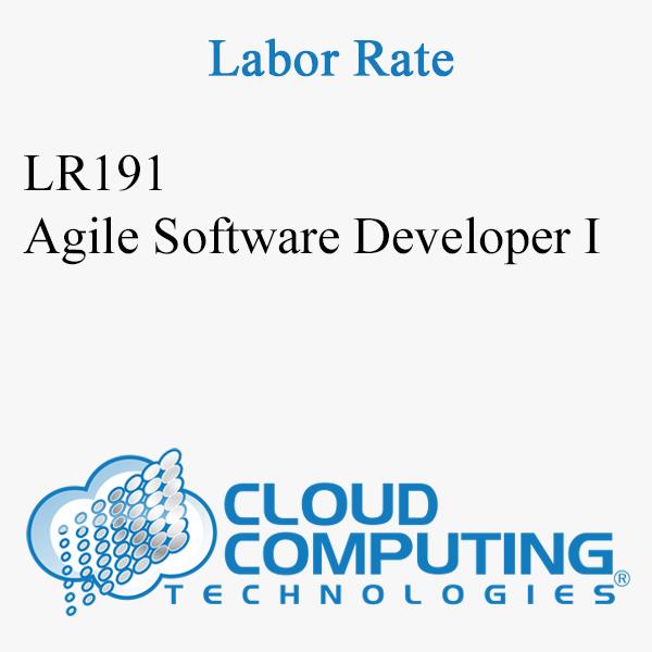 Sviluppatore di software Agile I