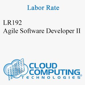 Sviluppatore software Agile II
