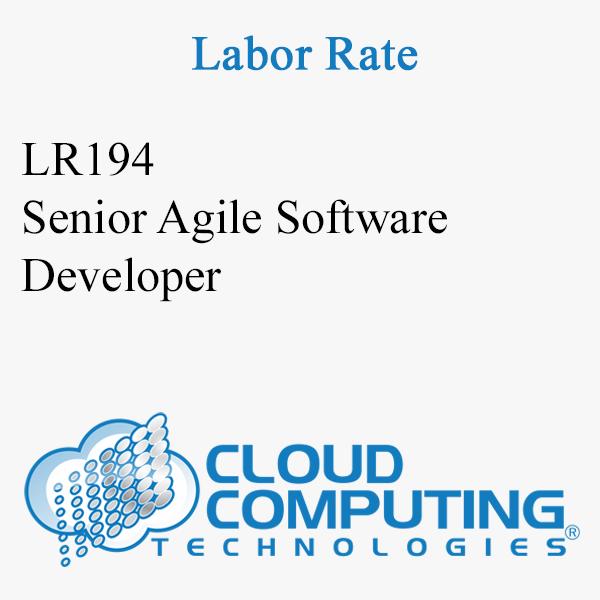 Sviluppatore senior di software Agile