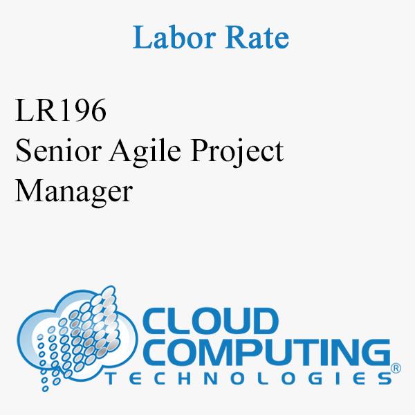 Chef de projet Agile Senior